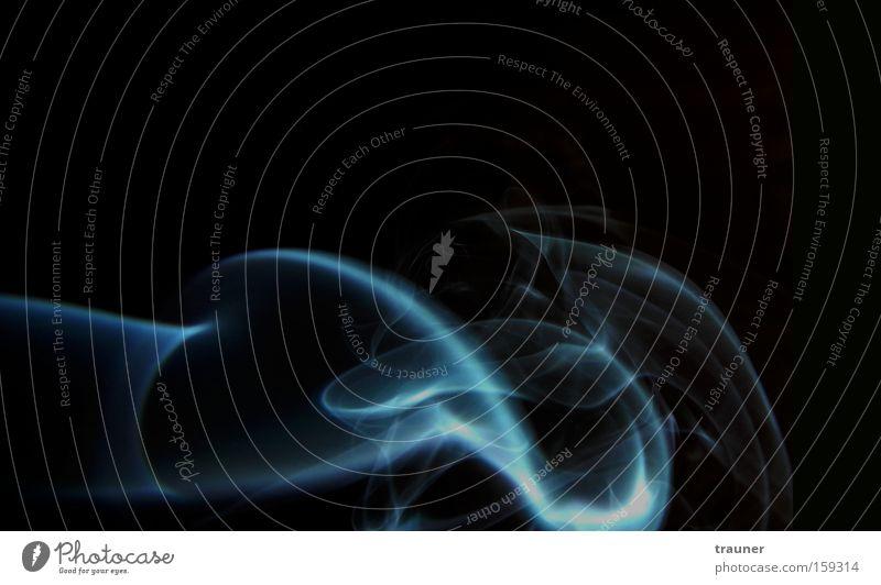 Aus der Sicht eines Rauchers... blau ruhig schwarz dunkel Erholung Trauer ästhetisch Rauchen Sehnsucht Gelassenheit Zigarette Duft Tabakwaren Makroaufnahme