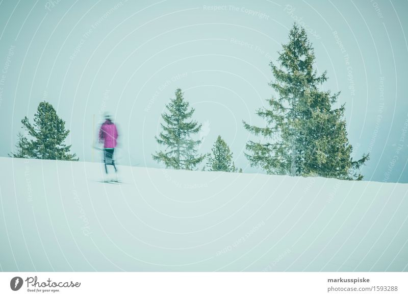 skifahrer im zillertal Lifestyle sportlich Fitness Freizeit & Hobby Winter Schnee Winterurlaub Berge u. Gebirge Sport Skifahren Skier Snowboard Skipiste