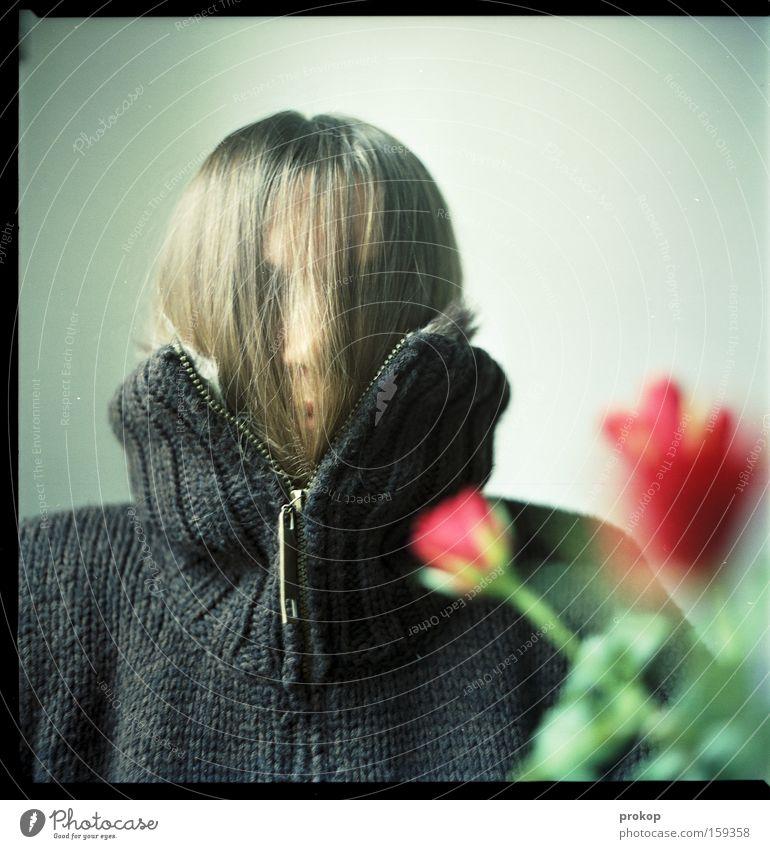 Rosen für MJ Watson Frau anonym schenken verstecken Schüchternheit Mensch Blume unsichtbar Blüte Blühend Pullover Freude Vertrauen Zufriedenheit zugeschnürt