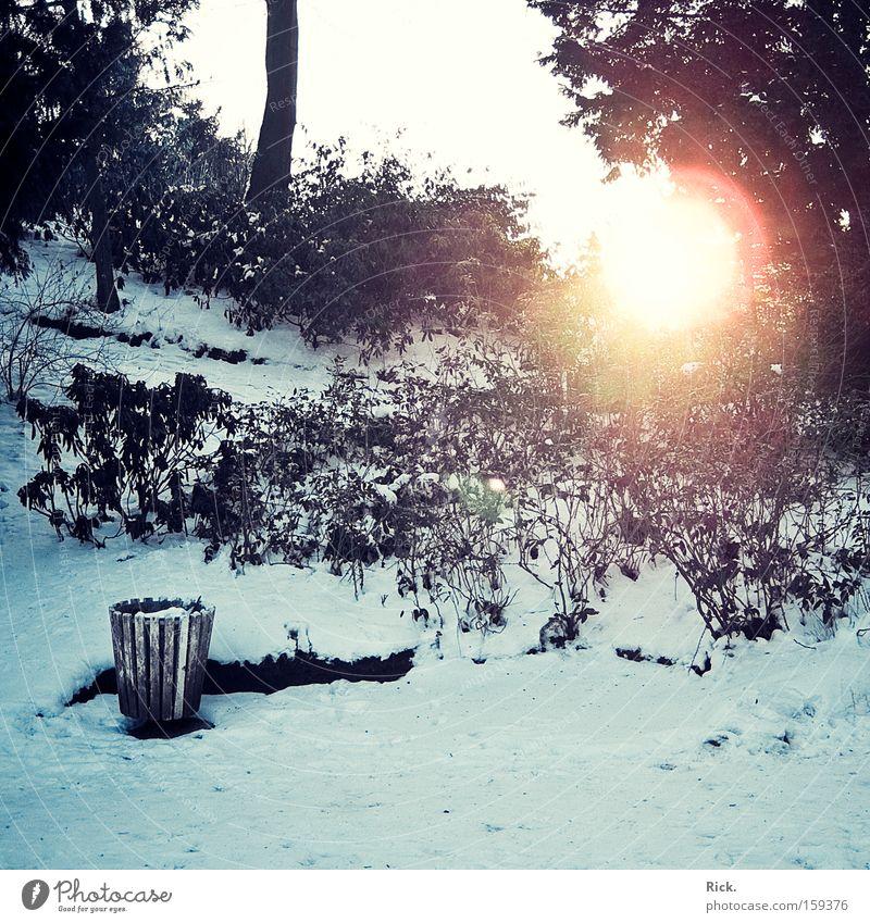 .Winter is gone. Farbfoto Außenaufnahme Menschenleer Licht Schatten Sonnenstrahlen Zentralperspektive Sinnesorgane Erholung ruhig Schnee Garten Natur Himmel Eis