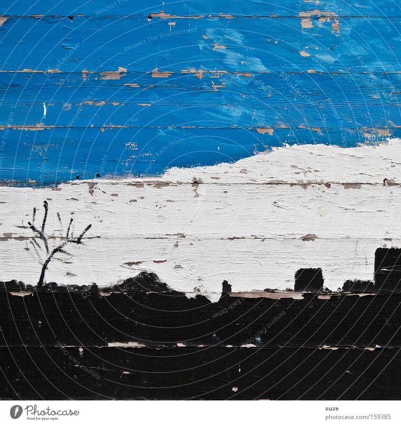 Pappel am Karlsplatz Lifestyle Design Wolken Baum Mauer Wand Fassade Holz Linie Streifen alt kaputt trist trocken blau schwarz weiß verfallen Bild Holzwand