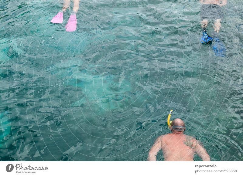 Ein paar Stunden wässern Ferien & Urlaub & Reisen Tourismus Sommer Sommerurlaub Meer tauchen Schnorcheln Wasser Mann Erwachsene 3 Mensch See Schwimmen & Baden