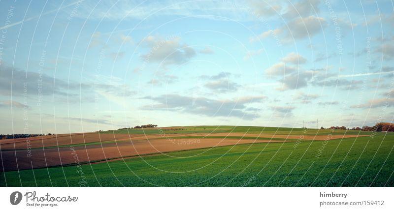 stockfield Natur Himmel Wolken Wiese Frühling Landschaft Feld groß Landwirtschaft Jahreszeiten Ackerbau Bioprodukte Panorama (Bildformat) Biologische Landwirtschaft