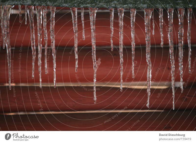 Last winterdays II Farbfoto Außenaufnahme Detailaufnahme Strukturen & Formen Tag Kontrast Winter Eis Frost Linie kalt rot Eiszapfen Zapfen Balken Jahreszeiten