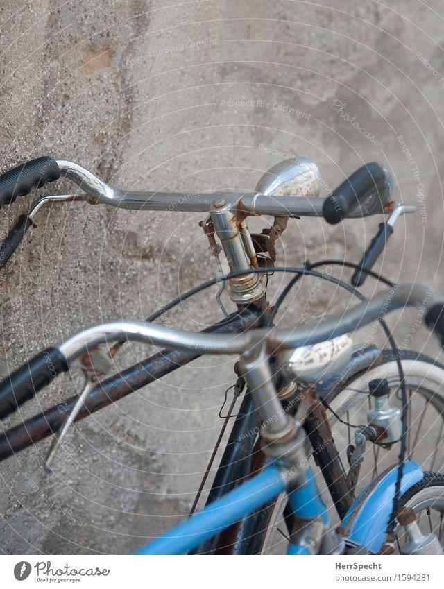 Old friends Verkehrsmittel Straßenverkehr Fahrzeug Fahrrad alt einzigartig retro blau grau parken Hollandrad paarweise Zusammensein Rost Fahrradlenker