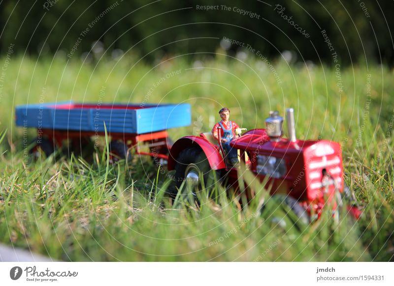 Back to work Mensch Natur Mann grün Sommer Sonne Landschaft rot Erwachsene Frühling Wiese Wege & Pfade Gras Spielen Glück Arbeit & Erwerbstätigkeit