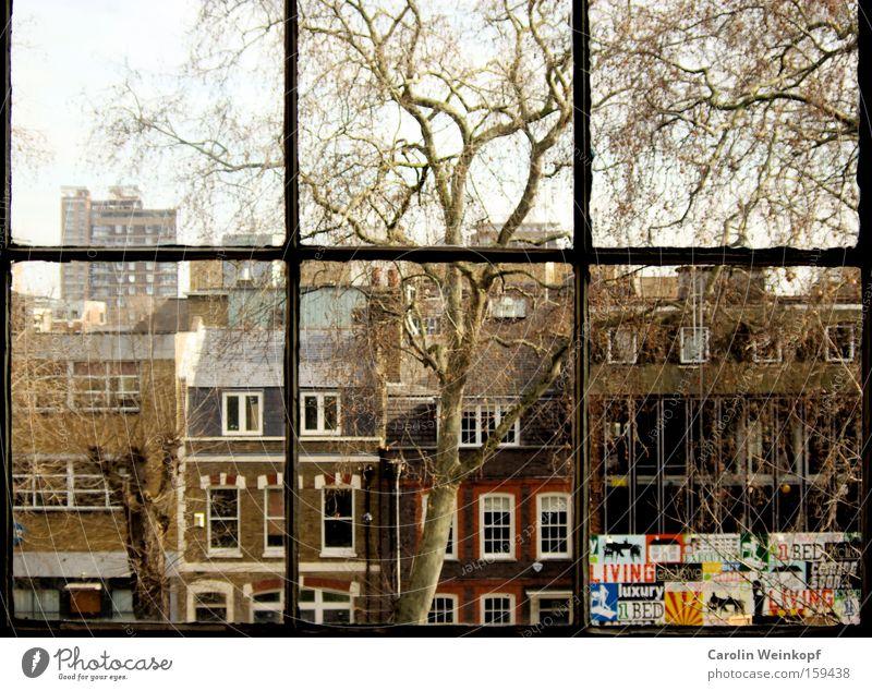 Hoxton Square. Baum Haus Fenster Wohnung Aussicht Häusliches Leben Verkehrswege London England Großbritannien Loft