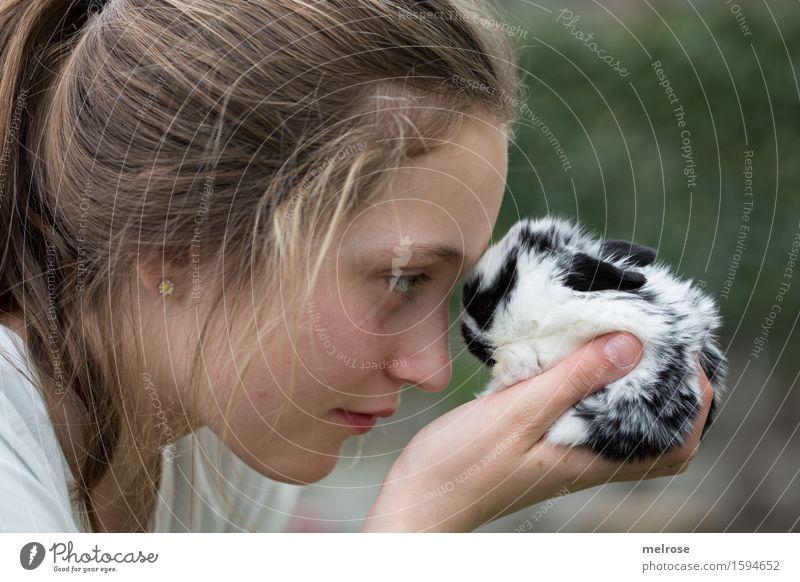 Schau mir in die Augen ... Mädchen Gesicht Arme Hand Finger 1 Mensch 8-13 Jahre Kind Kindheit Haustier Fell Hasenbaby Zwergkaninchen Nagetier Säugetier