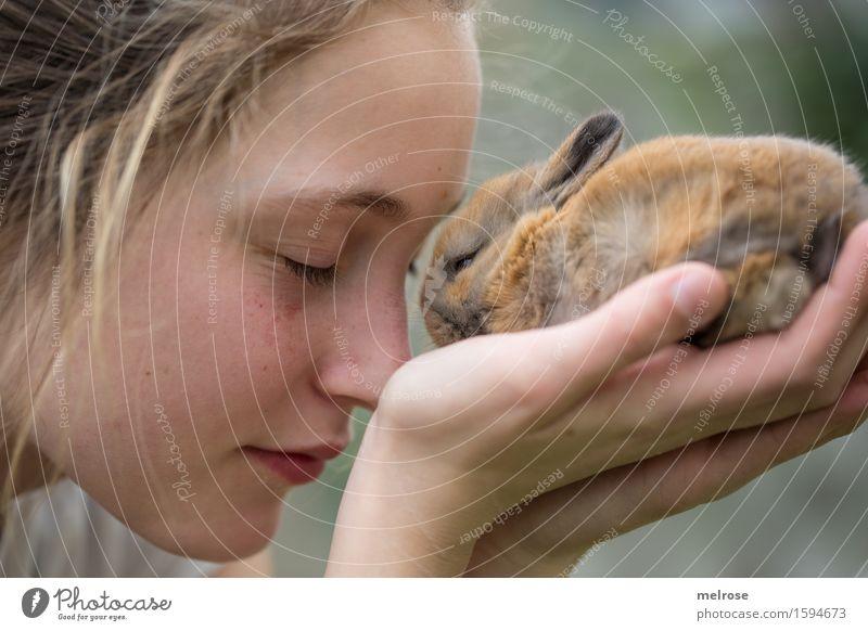 Hab dich soooo lieb Mensch Kind grün Hand Tier Mädchen Gesicht Tierjunges Liebe Gefühle grau braun Freundschaft Zufriedenheit Kindheit genießen