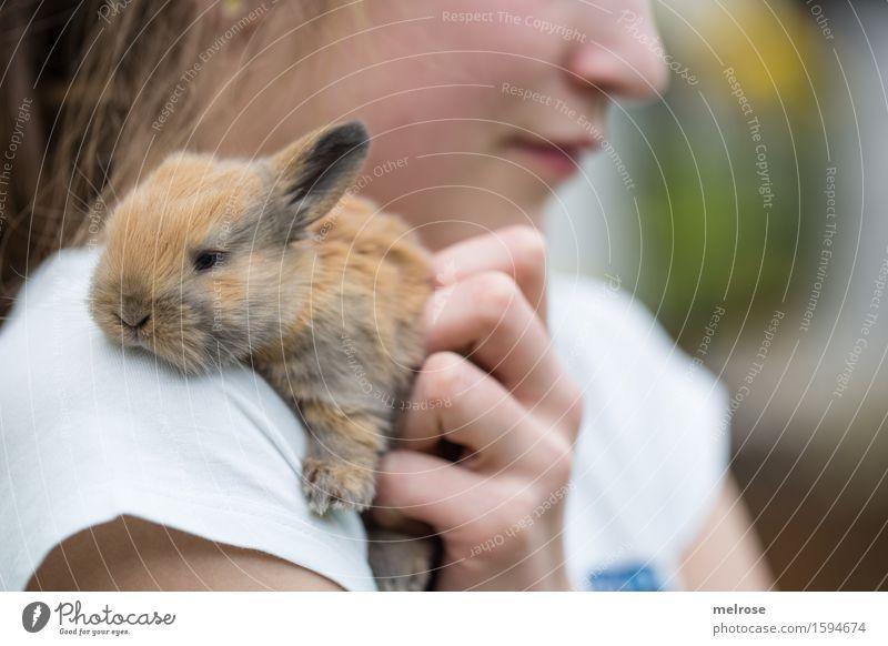 anschmiegsam Mensch Kind grün weiß Hand Erholung Tier Mädchen Gesicht Tierjunges Liebe Gefühle feminin klein braun liegen