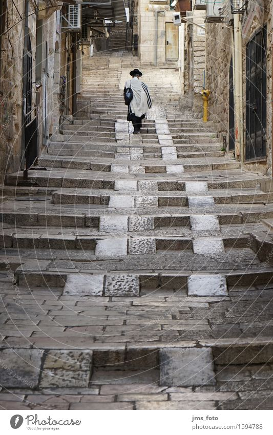 Jude nach oben Mensch Stadt Erwachsene Religion & Glaube maskulin Weisheit Israel Judentum 30-45 Jahre Jerusalem