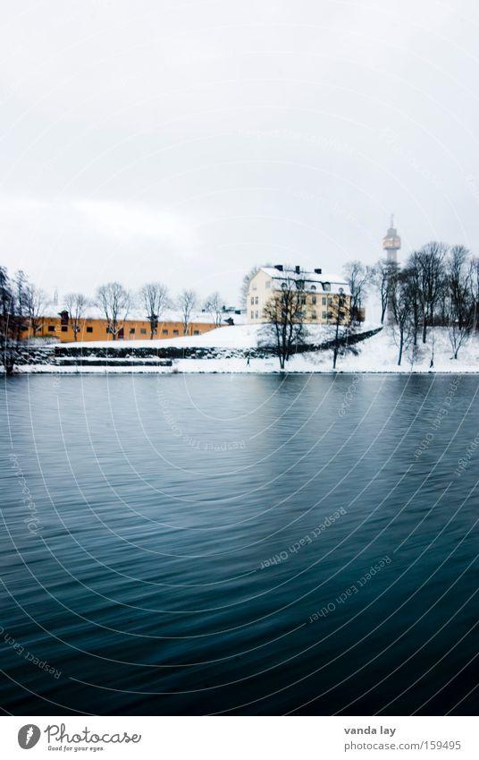 Djurgårdsbrunnsvägen Wasser Meer Winter ruhig Haus Einsamkeit kalt Schnee See Landschaft Küste Fluss Seeufer Flussufer Schweden Weide
