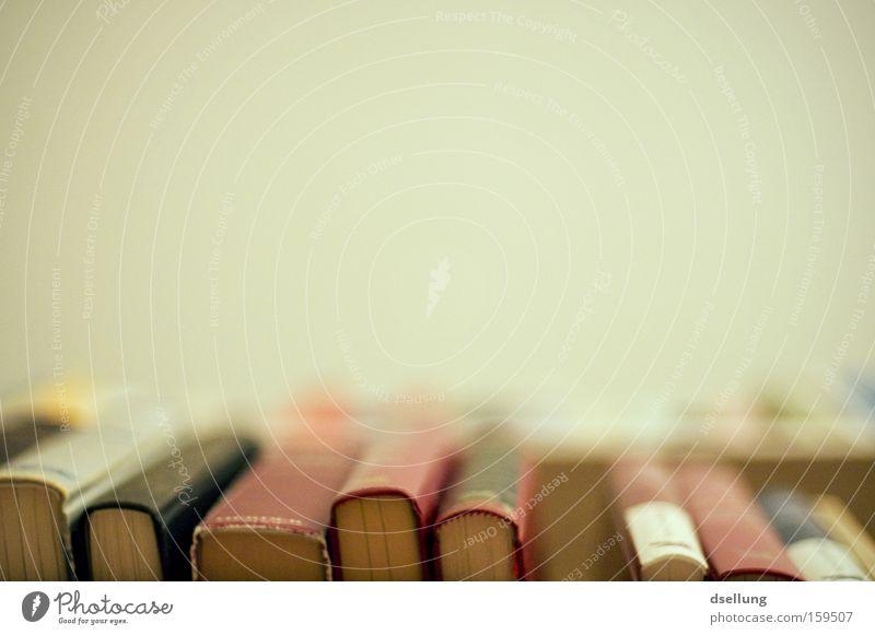 Perspektive auf die Bücher Buch Regal alt Leseratte Bildung Bücherregal Froschperspektive Menschenleer Bibliothek Literatur Lesestoff lesen Wissen lernen