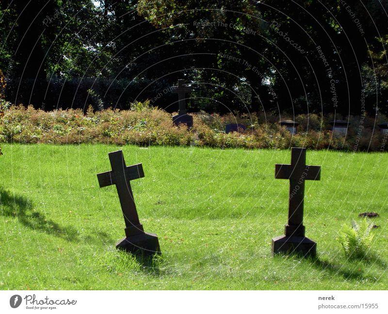 Das Grabmal alt grün Sonne Sommer Einsamkeit ruhig Tod Wiese Rücken verrückt kaputt Trauer historisch Verzweiflung Friedhof Gotik