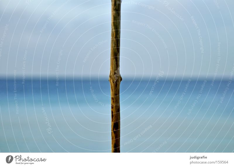 1000 Himmel Wasser Meer Wolken Farbe Holz See Linie Horizont Ast Teilung Ostsee Stock Stadtteil Stab Raster