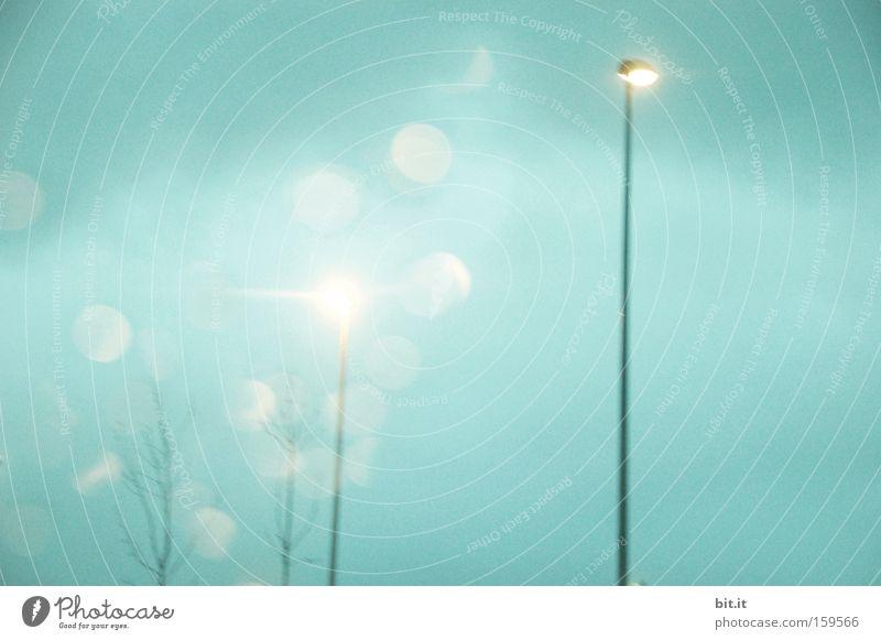 KOMMT VON IRGENDWO EIN LICHTLEIN HER Himmel blau kalt Traurigkeit Lampe Horizont träumen Wetter Energiewirtschaft frisch Punkt Frost Wunsch Laterne Licht