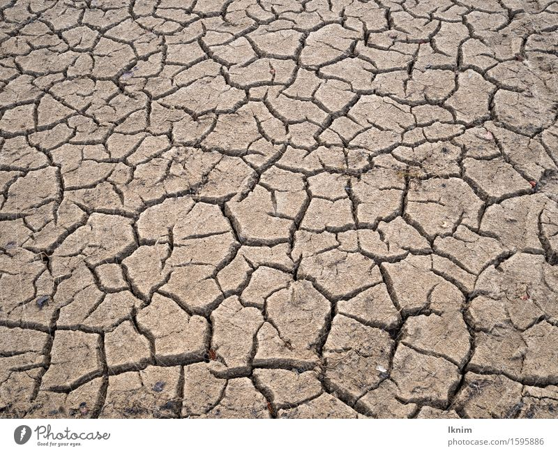 Risse im Boden, ausgetrockneter Acker Umwelt Erde Klimawandel Dürre trocken bedrohlich Krise Natur Umweltverschmutzung Umweltschutz Verfall Zerstörung