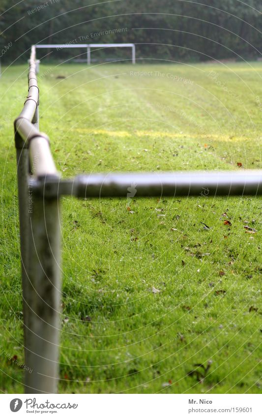 {_ grün Wiese Sport Spielen Freizeit & Hobby Fußball Spielfeld Sportrasen treten Ballsport Sportplatz Stehplatz