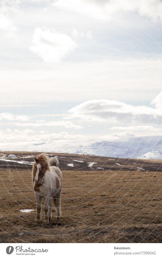 UWE. Freizeit & Hobby Ferien & Urlaub & Reisen Tourismus Ausflug Abenteuer Ferne Freiheit Sightseeing Expedition Winter Umwelt Natur Landschaft Erde Himmel