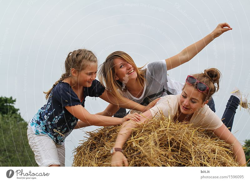 Heuhüpfer Spielen Freiheit Sommer Mensch feminin Mädchen Geschwister Familie & Verwandtschaft Freundschaft Kindheit Menschengruppe Natur Freude Glück