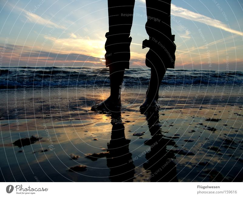 Sonnenuntergangsfüße schön Meer Sommer Strand Ferien & Urlaub & Reisen Einsamkeit träumen Sand Kraft Wellen Erfolg Zukunft Schwimmen & Baden Mut Seeufer