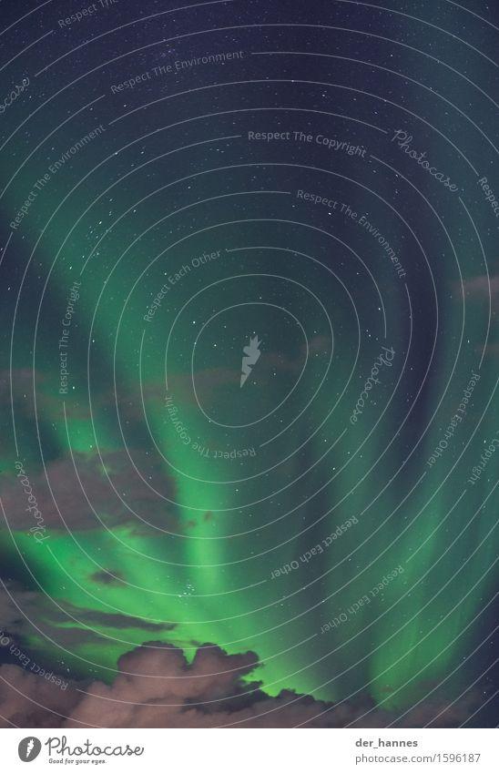aurora.113 Umwelt Natur nur Himmel Wolken Nachthimmel Stern Herbst Nordlicht Bewegung leuchten außergewöhnlich fantastisch demütig Überraschung Farbfoto
