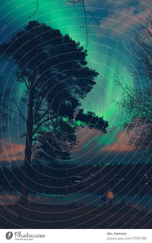 aurora.112 Himmel Natur Pflanze Wasser Baum Landschaft Herbst Garten leuchten stehen beobachten Stern Schönes Wetter Hoffnung Seeufer Glaube