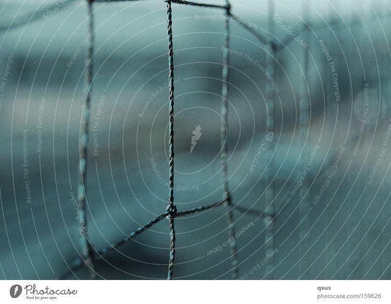 (HB09.1) - Kurzsichtig Zaun Grenze Barriere Draht Flechtzaun gefangen Freiheit Unschärfe Sicherheit Makroaufnahme Nahaufnahme Langeweile die andere Seite