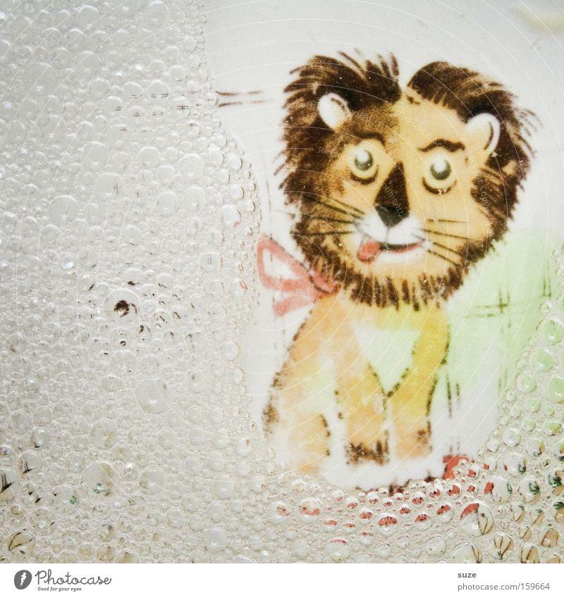 Löwenbier Wasser lustig Kindheit Sauberkeit Geschirr Blase Teller Kindheitserinnerung Reinigen Schaum graphisch Löwe Zeichnung Katze gemalt Geschirrspülen