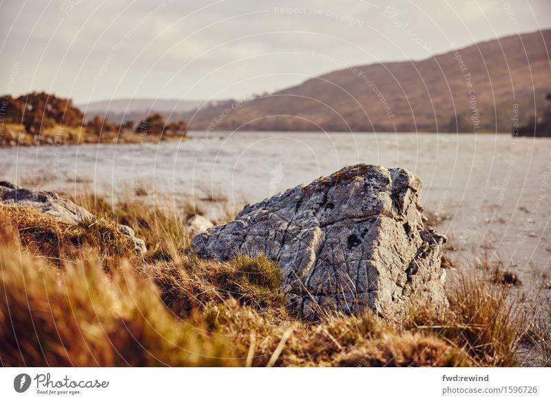 Ein Stein Natur Ferien & Urlaub & Reisen Sommer Landschaft Ferne Frühling Herbst Gras Küste Felsen Horizont Zufriedenheit Erde Kraft Idylle