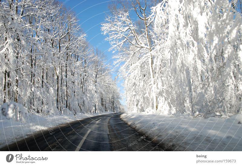 St2316 - Fahrt ins Weiße Winter Straße Wald Schnee Berge u. Gebirge fahren Verkehrswege Kurve Glätte Schlamm alpin Landstraße Winterdienst