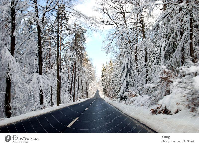 St2316 - Fahrt ins Weiße Winter Straße Wald Schnee Linie fahren Verkehrswege Glätte Schlamm alpin Landstraße Winterdienst