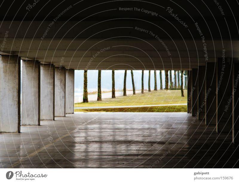 tunnelblick Baum kalt Architektur grau Gebäude Park Linie glänzend Beton Platz trist Fluss Asphalt Verfall bizarr Flussufer