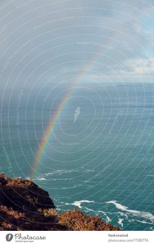 Tag am Meer Natur Ferien & Urlaub & Reisen Erholung Freude Leben Küste Glück Stimmung Tourismus Zufriedenheit Wetter ästhetisch Erfolg Fröhlichkeit genießen