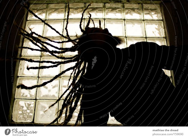 SCHÜTTEL DEIN HAAR FÜR MICH Silhouette Mensch Mann Haare & Frisuren Rastalocken schwingen Bewegung Aktion Fenster Gegenlicht schütteln drehen frei