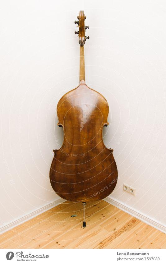 Kontrabass von hinten Kunst Musik Konzert Musikinstrument Holz Inspiration Leistung Reichtum Schule Farbfoto Innenaufnahme Menschenleer Textfreiraum links