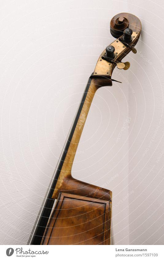 Kopf von einem Kontrabass Holz Kunst Musik lernen Reichtum Konzert Musiker Klassik Jazz Saiteninstrumente