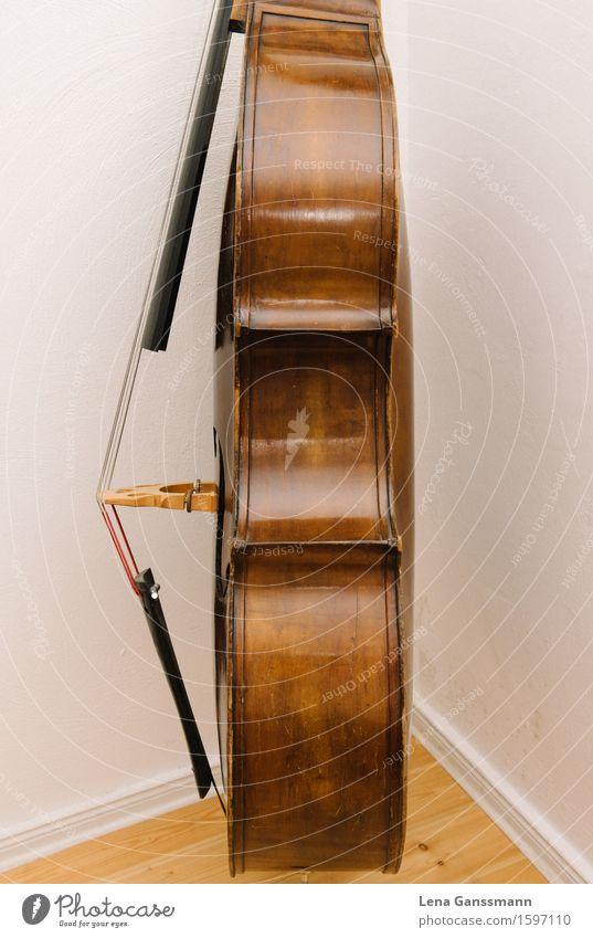 Kontrabass - Seitenansicht Freude Nachtleben Entertainment Musik Konzert Musiker Bassgeige Musikinstrument braun Farbfoto Menschenleer Blitzlichtaufnahme
