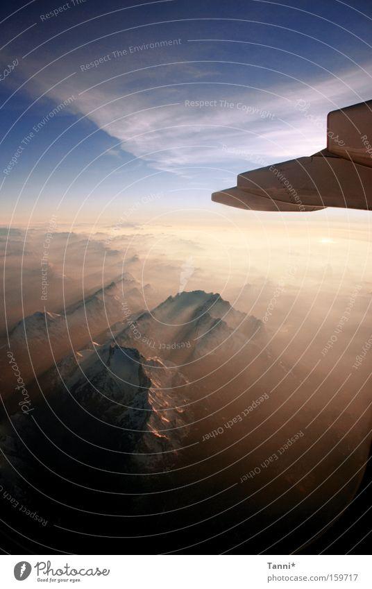 Über den Wolken... Himmel fliegen Flugzeug Flugschau Fliesen u. Kacheln blau Abend Dämmerung Berge u. Gebirge Alpen Luftverkehr