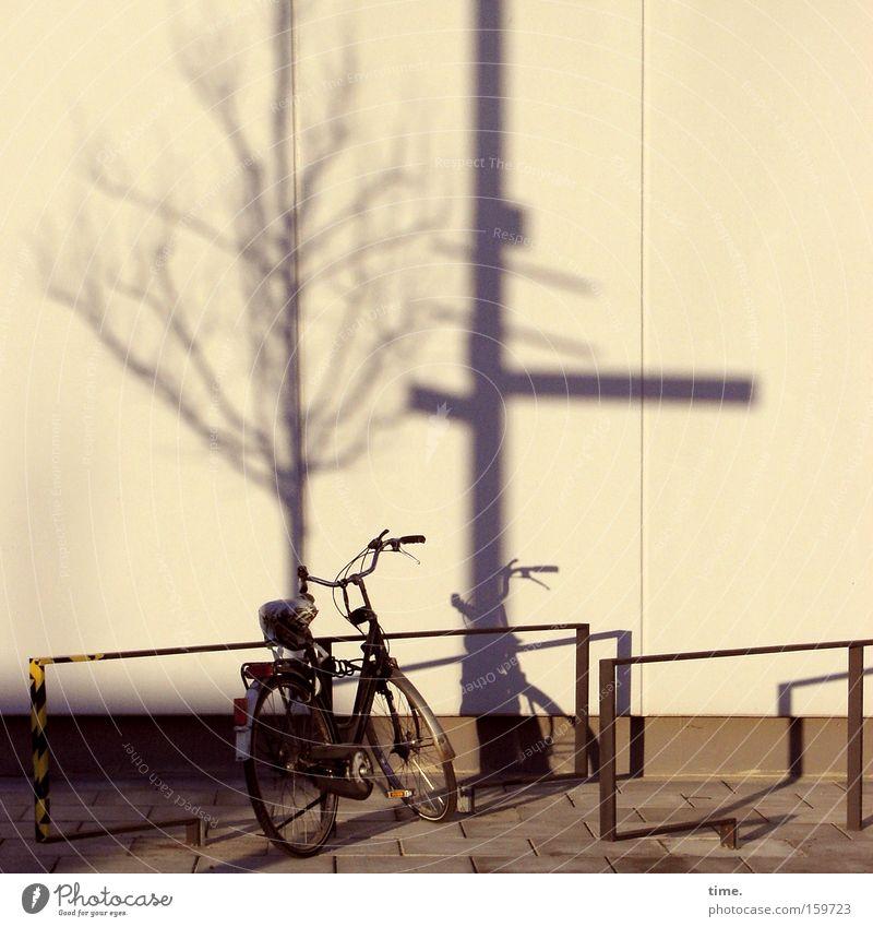 HB09.1 - Spätschicht Fahrrad Baum Mauer Wand Verkehr Wege & Pfade Schilder & Markierungen stehen Stadt Leben Endzeitstimmung Inspiration Stimmung Irritation