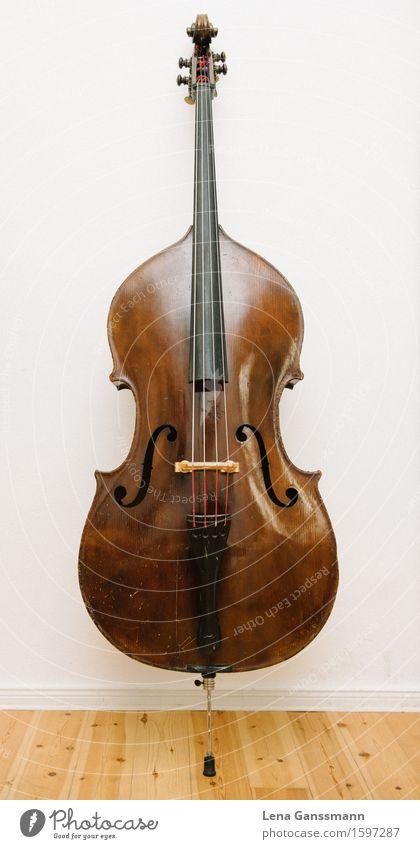 Wunderschöner Kontrabass Holz braun Musik groß harmonisch Meditation Konzert Bühne Musiker Saite Saiteninstrumente
