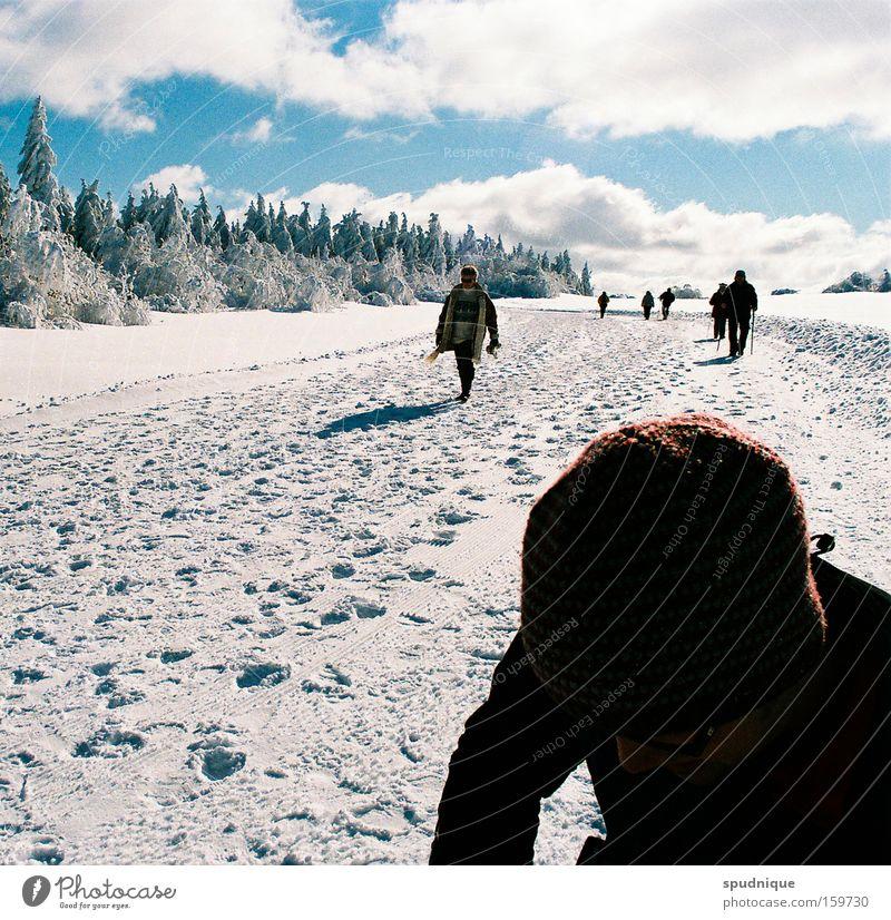 Tourismus Schnee Winter Eis Feld Wege & Pfade Spuren Raureif wandern Himmel Wolken weiß Ferne Freiheit schön