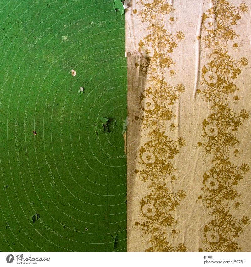über geschmack ... schön Blume grün Wand Wohnung Zeit Hoffnung kaputt Wandel & Veränderung Vergänglichkeit Tapete verfallen Quadrat Umzug (Wohnungswechsel)