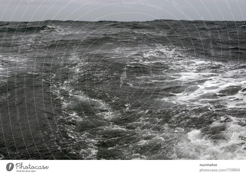 Biskaya, Meer mehr! Meer springen Freiheit Wellen Horizont fahren Reisefotografie Schifffahrt Segel Segelboot Atlantik Delphine Meerwasser