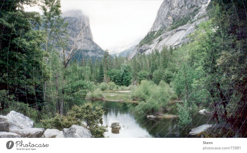 See und Berge Natur Baum ruhig Ferne Wald Berge u. Gebirge Stein Landschaft Nebel Aussicht Tanne