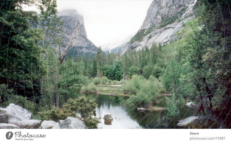 See und Berge Wald Baum Tanne Nebel Reflexion & Spiegelung ruhig Berge u. Gebirge Stein Aussicht Landschaft Natur Ferne