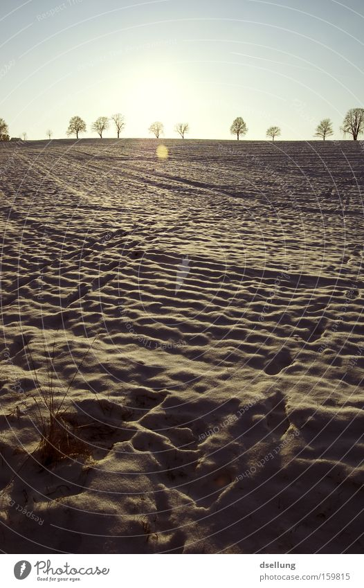 Spuren im Schnee Winter Sonnenuntergang Horizont Gras Feld Fußspur kalt im halteverbot geparkt