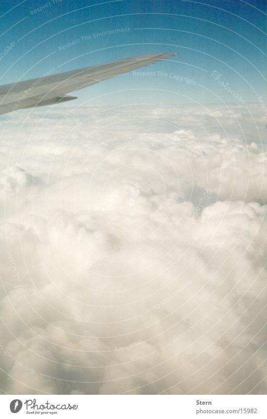 Über den Wolken... Flugzeug Horizont Tragfläche Zuckerwatte Himmel blau fliegen Niveau