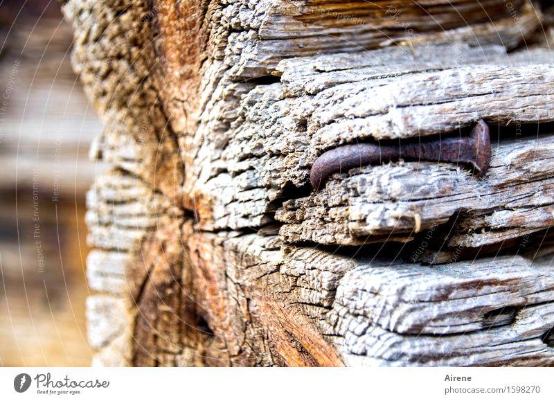 behämmert Hausbau Renovieren Holzwand Dorf Hütte Bauernhof Balken Nagel Rost alt kaputt braun grau Misserfolg Verfall Neigung krumm Biegung gekrümmt verwittert