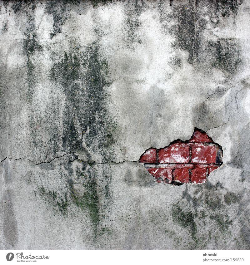 Auf den Putz gehauen! Mauer Backstein Stein schäbig verfallen verwittert dreckig Grünspan Riss Einsturzgefahr Fleck gefleckt trist Baustelle Mund Österreich